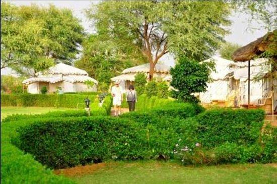 Abhaneri Village Safari Camp: Circle Pathway and Garden in centre