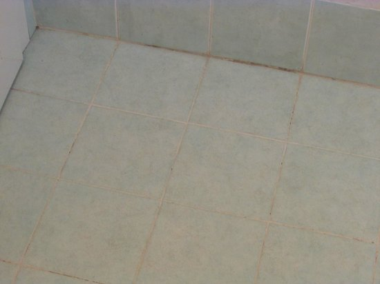 IBEROSTAR Club Boa Vista:                   Dirty grout in the bathroom
