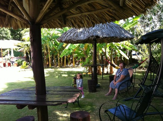 Casa Carlos y Ana Maria : giardino4