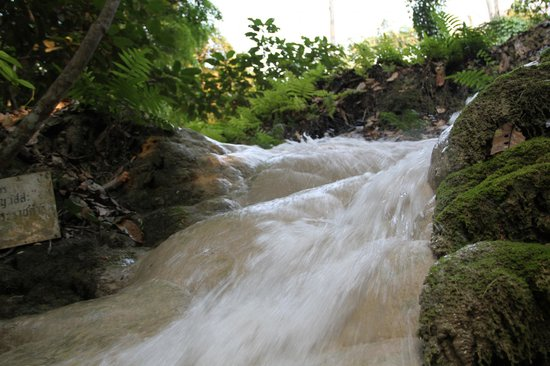 Chiang Mai Adventure Tour: Buatong falls