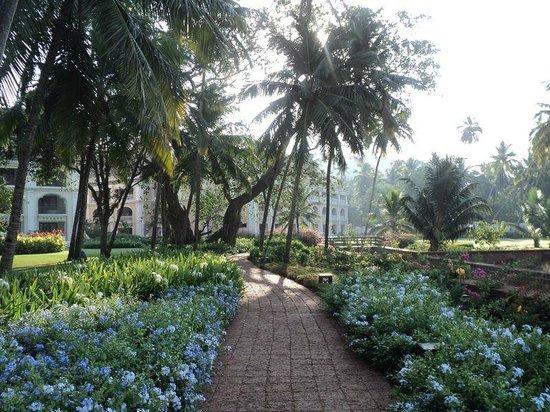 Grand Hyatt Goa: A flowery path that led to my room