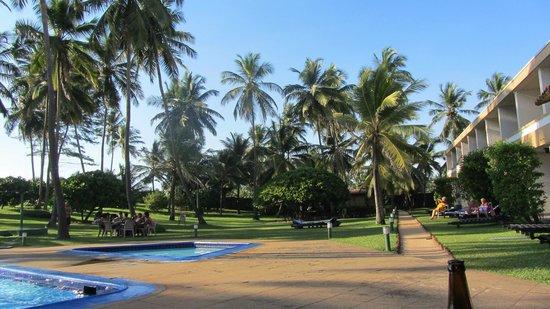 Palm Village Hotel: tuin