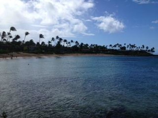 The Kapalua Villas, Maui: One of the many beaches at Kapalua