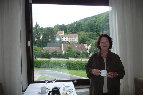 Hôtel des Vosges : Vue de la salle à manger