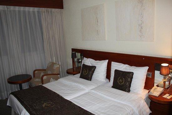 Hotel ibis Geneve Centre Lac: Room
