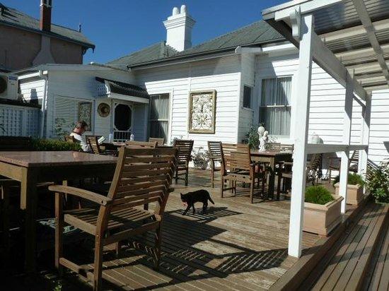 Ashton Gate Guest House: Sunny courtyard