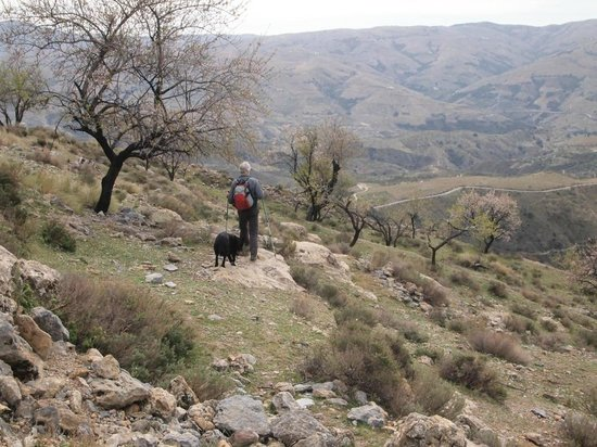 Hotel los Bérchules: Hiking with Jeremy from Walkalpujarra and Sammy - Wendy's dog