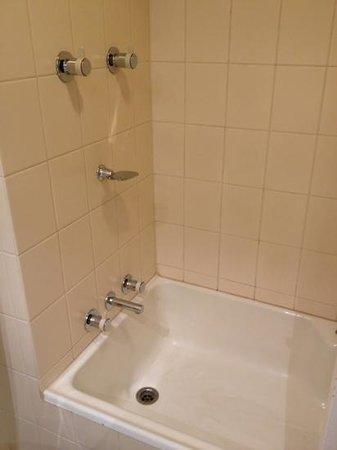 Stamford Plaza Adelaide: shower over bath