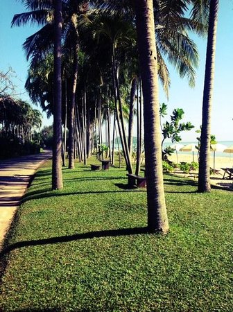 Baan Klang Aow Beach Resort: Beach directly across from the hotel