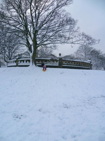 Greenhead Park: A lovely day in the snow