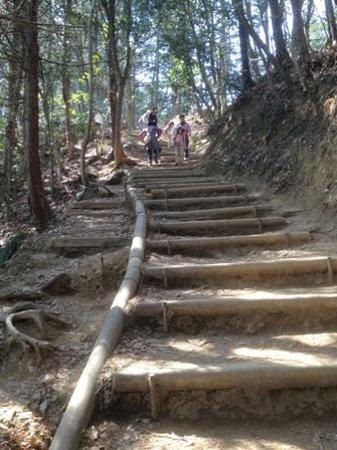Mt. Takao: Inariyama Trail