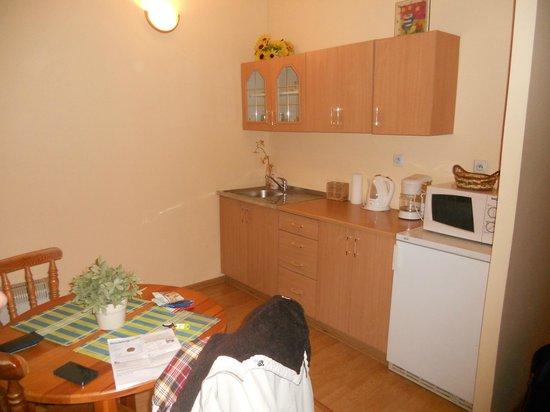 Cracowrent Apartments: La cucina