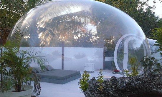 Les Bulles de Marie Galante: La bulle