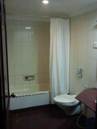 The Vijay Park Hotel Chennai: Bathtub