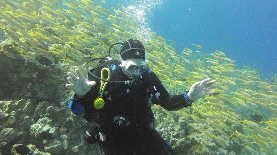 Diamond Red Sea Divers: jorma hyry