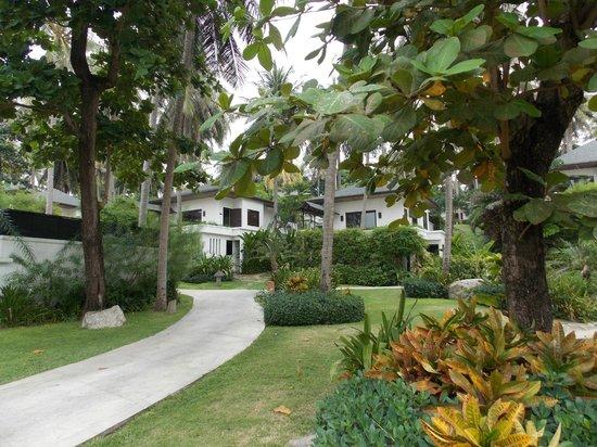 The Racha: Gardens