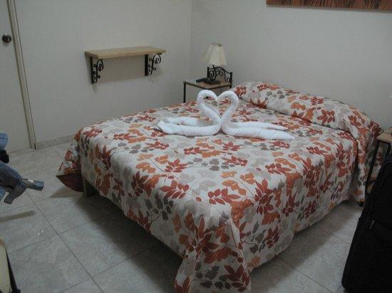 Hotel Las Flores : room