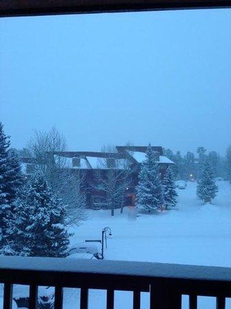 Pine Ridge Condominiums: la vista desde nuestra ventana