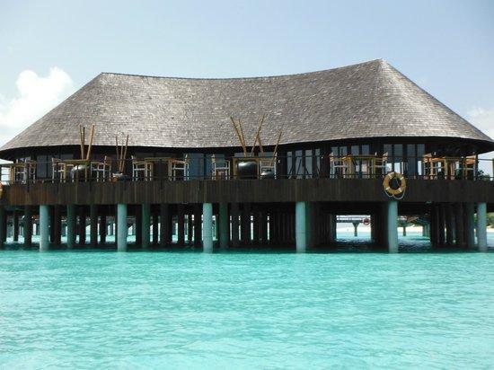 Restaurant picture of the sun siyam iru fushi maldives for Hilton hotels in maldives