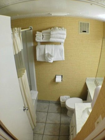 The Victorian Condo-Hotel Resort & Conference Center: Bathroom