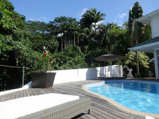 Copolia Lodge: piscine