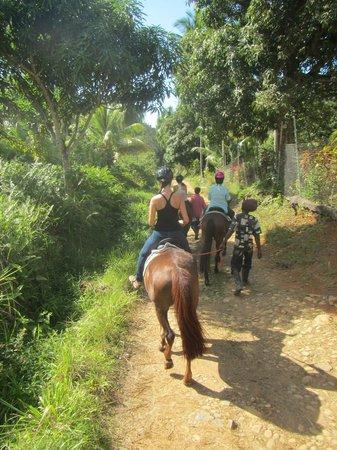 Brandy Manor Riding Center : Heading off