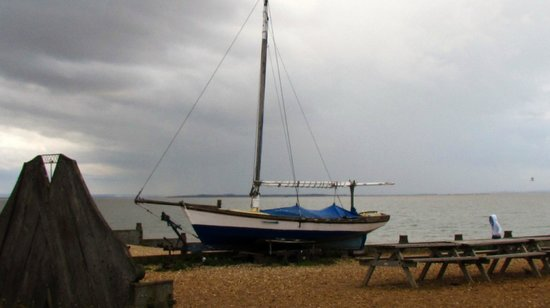 Tankerton Beach: Winter home to summer playmates