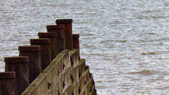 Tankerton Beach: Elements