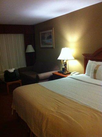 هوليداي إن آشفيل - بيلتمور إيست: king bed