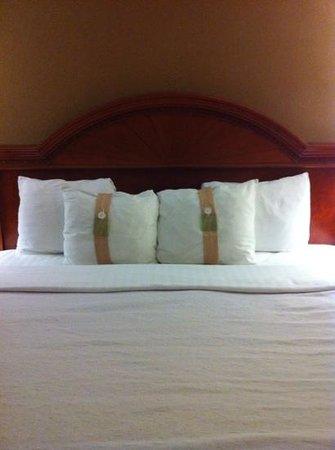 Holiday Inn Asheville - Biltmore East : king bed