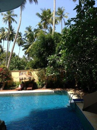 La Maison Nil Manel: vue depuis la chambre