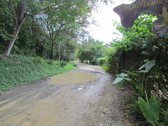 Hotel Samara Pacific Lodge:                   The road out to the hotel