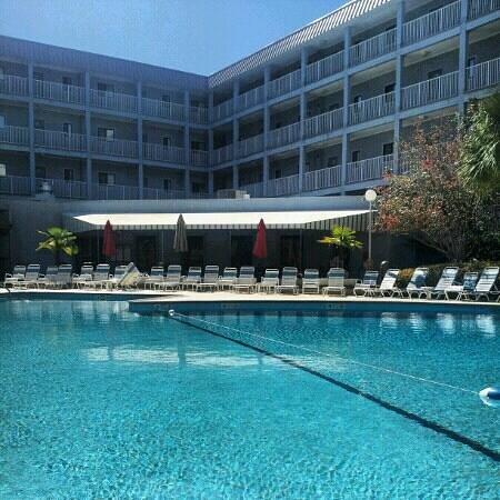 Tripadvisor Hotels Hilton Head Island