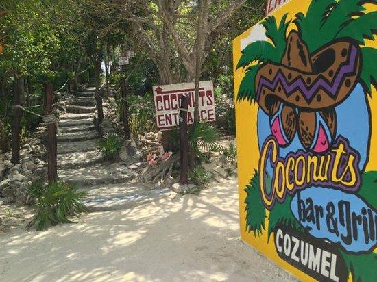 Cozumel Bar Hop: Entrance at Coconuts Bar and Grill