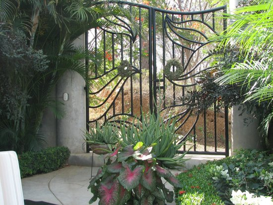 Orquidea del Sur: Grounds