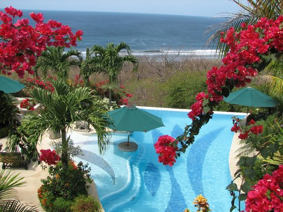 Orquidea del Sur: Pool