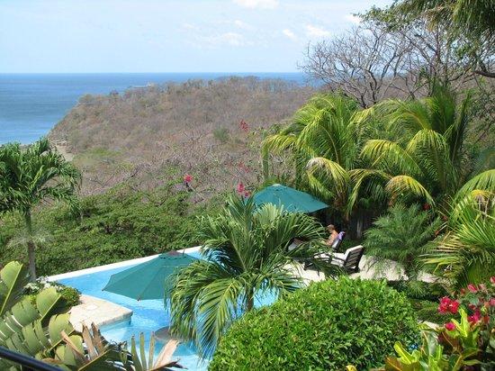 Orquidea del Sur: Pool view