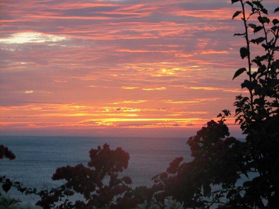 Orquidea del Sur: Sunset