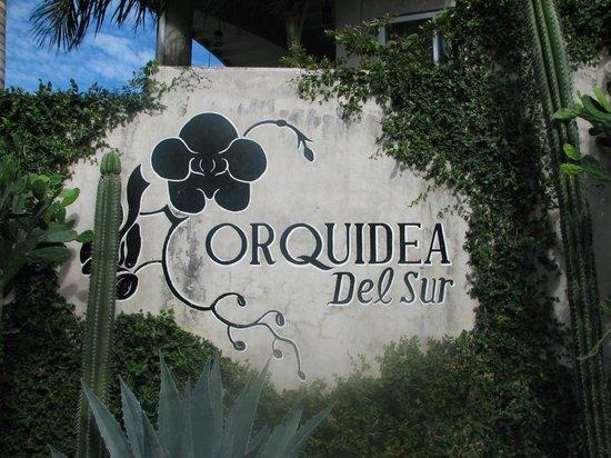 Orquidea del Sur: Sign