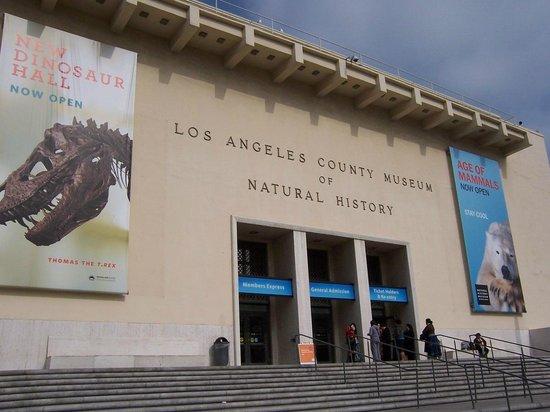 Los Angeles County Museum of Art: Entrada al museo de Paleontología