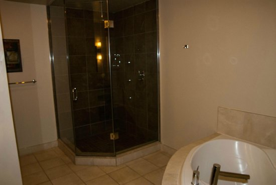 Sterling Inn & Spa: shower, jacuzzi