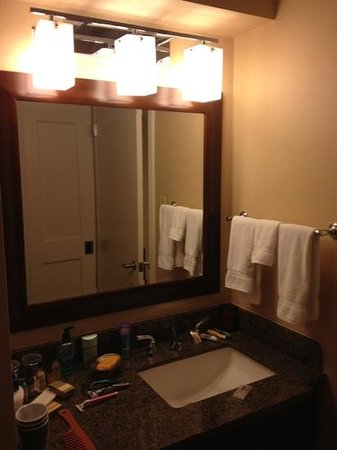 Park Ridge Marriott : bathroom