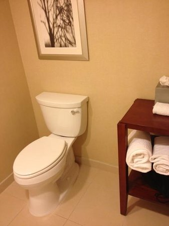 Park Ridge Marriott: bathroom