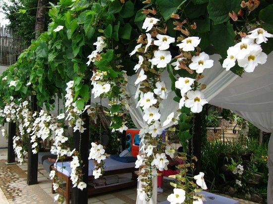 โรงแรมเลอ โซเลล เดอ โบราเคย์: Cabana/massage area by pool