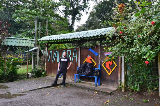 Walaba Hostel & Beach Houses: Enamorados de WALABA!!