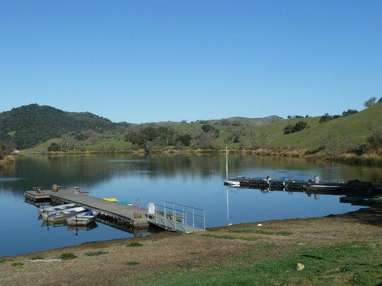Alisal Guest Ranch & Resort: Fishing lake was bountiful!