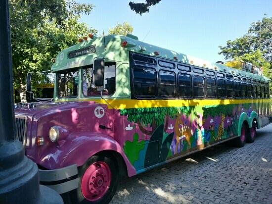 Grand Bahia Principe Coba: one of the colurful bus's that will take you to xplore or xel-ha