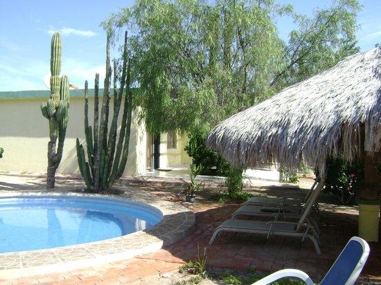 Hacienda Del Sol: Relax at breakfast at the Pool