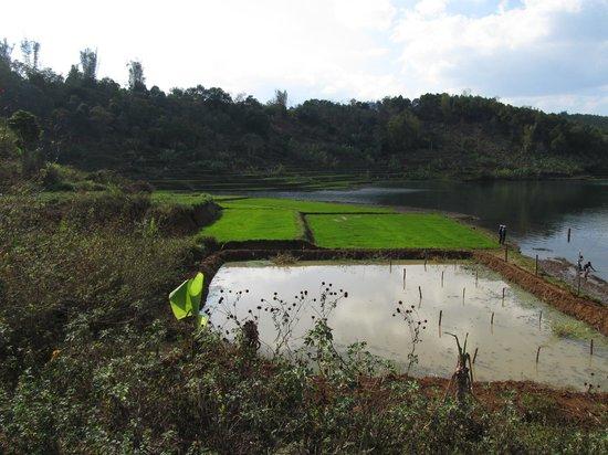 T'Nung Lake ( Ia Nueng) : T'Nung Lake