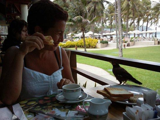 Katathani Phuket Beach Resort: paradiso